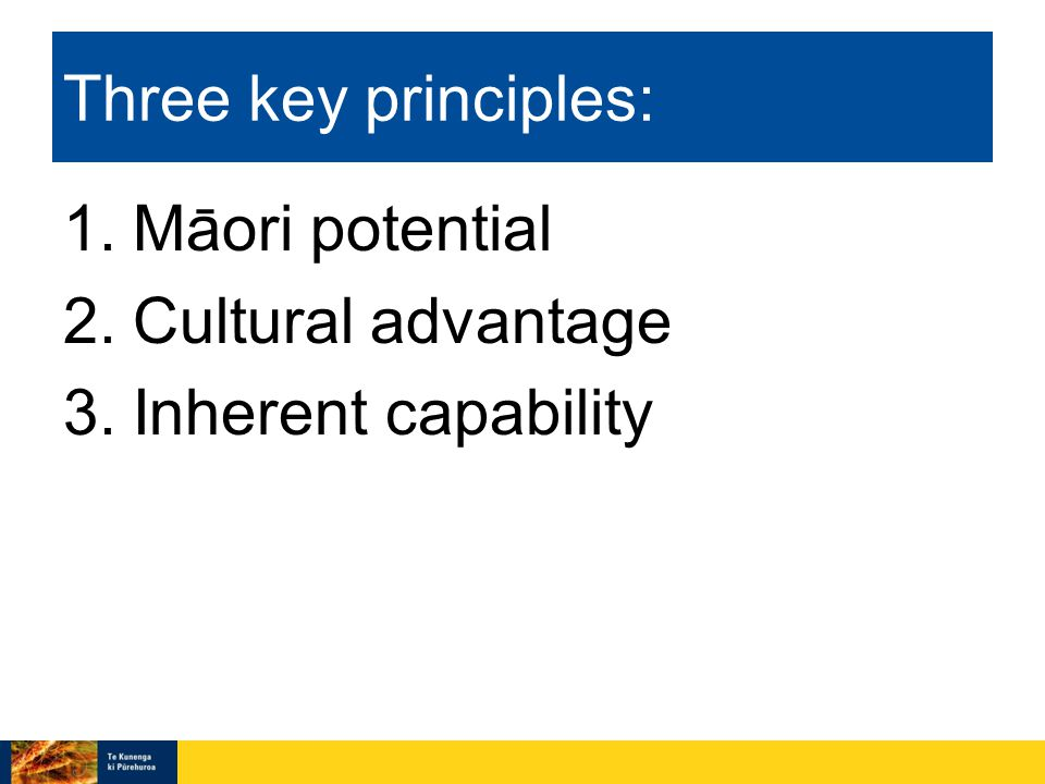 Three key principles: 1.Maori potential 2.Cultural advantage 3.Inherent capability ˉ