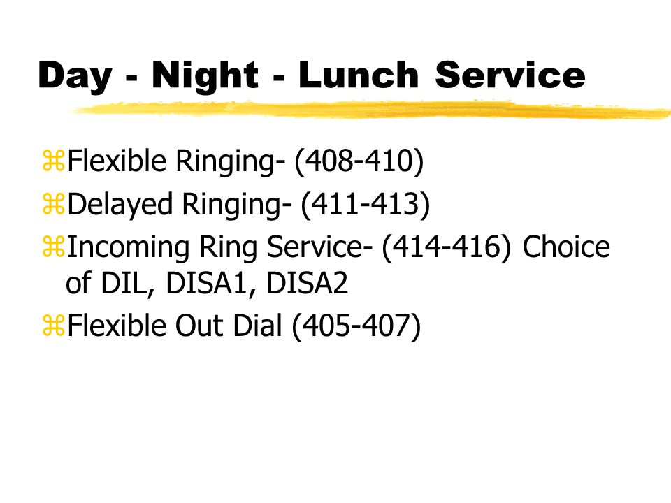 Day - Night - Lunch Service zFlexible Ringing- (408-410) zDelayed Ringing- (411-413) zIncoming Ring Service- (414-416) Choice of DIL, DISA1, DISA2 zFl