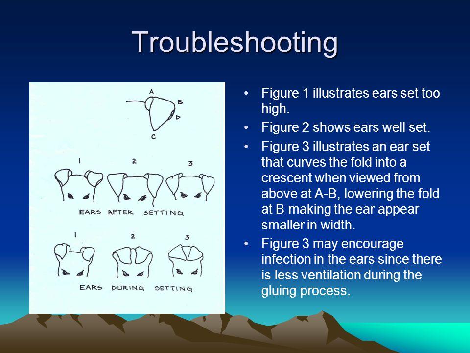 Troubleshooting Figure 1 illustrates ears set too high.