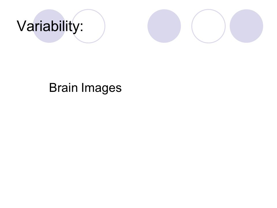 Variability: Brain Images