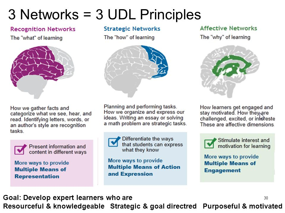 3 Networks = 3 UDL Principles 30 Goal: Develop expert learners who are Resourceful & knowledgeable Strategic & goal directred Purposeful & motivated