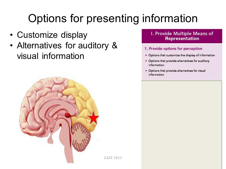 CAST 2012 Options for presenting information Customize display Alternatives for auditory & visual information
