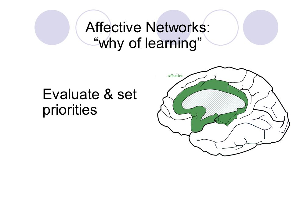 Evaluate & set priorities Affective Networks: why of learning