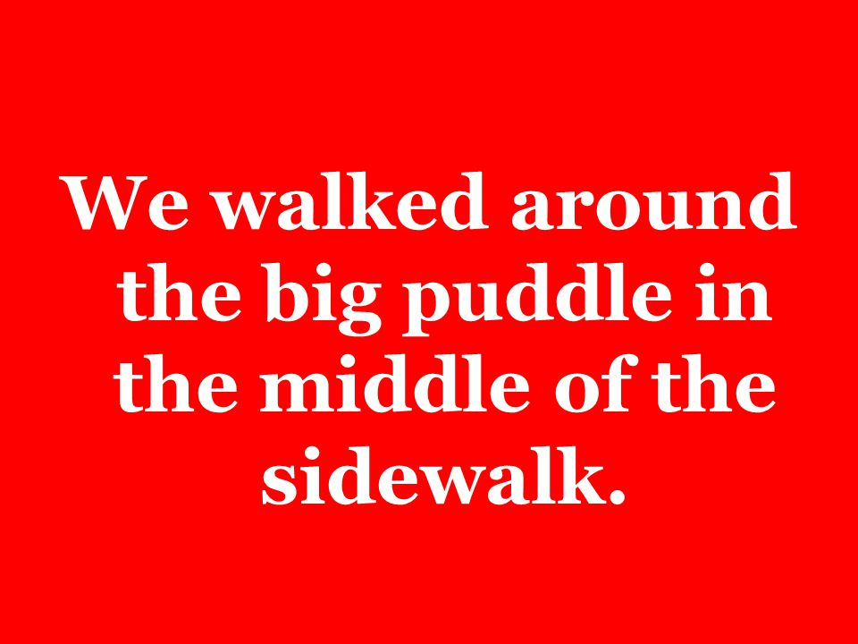 We walked around the big puddle in the middle of the sidewalk.