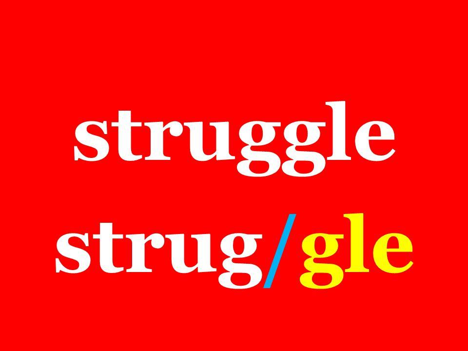struggle strug/gle