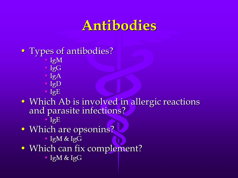 Antibodies Types of antibodies?Types of antibodies? IgMIgM IgGIgG IgAIgA IgDIgD IgEIgE Which Ab is involved in allergic reactions and parasite infecti