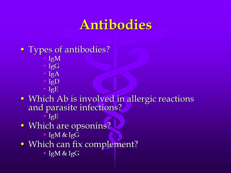 Largest antibody?Largest antibody.
