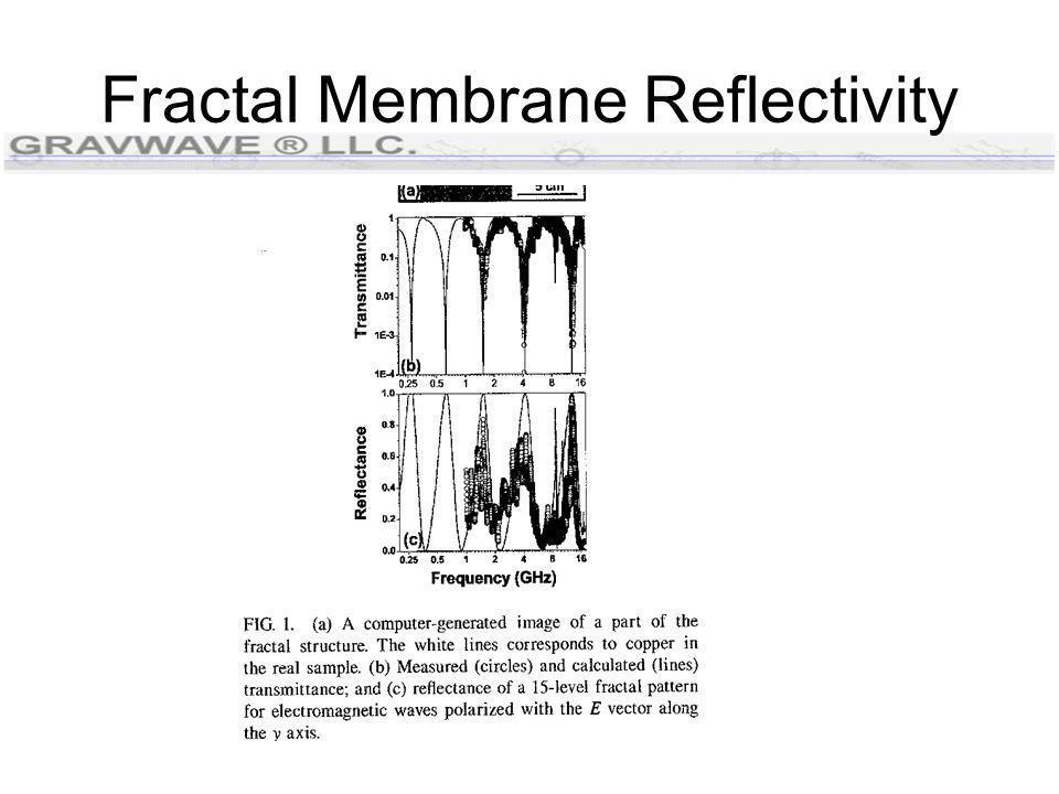 Fractal Membrane Reflectivity