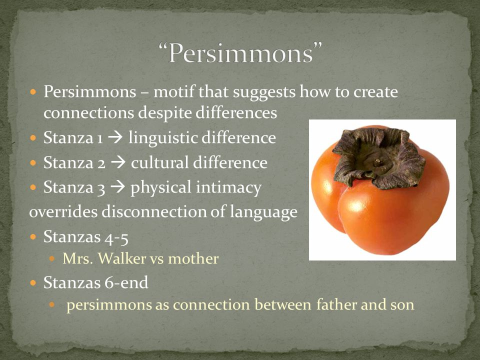 Persimmons – motif that suggests how to create connections despite differences Stanza 1  linguistic difference Stanza 2  cultural difference Stanza 3  physical intimacy overrides disconnection of language Stanzas 4-5 Mrs.