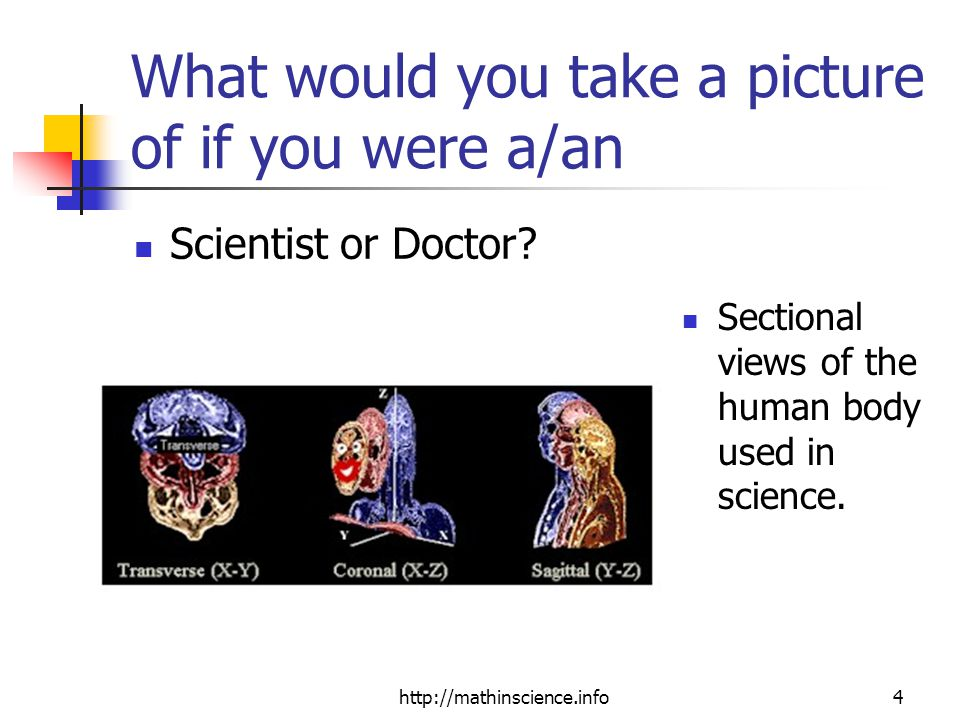 http://mathinscience.info4 What would you take a picture of if you were a/an Scientist or Doctor.