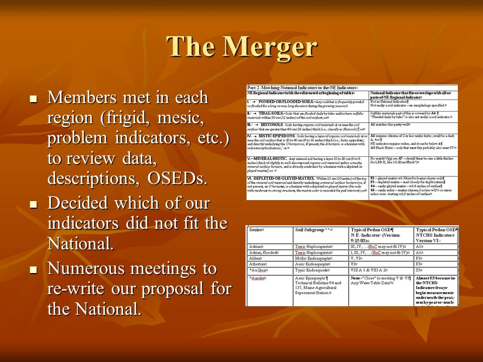 The Merger Members met in each region (frigid, mesic, problem indicators, etc.) to review data, descriptions, OSEDs.