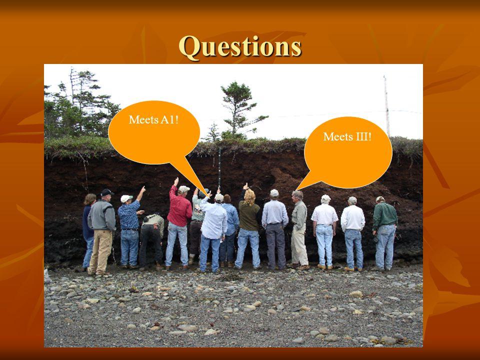 Questions Meets III! Meets A1!