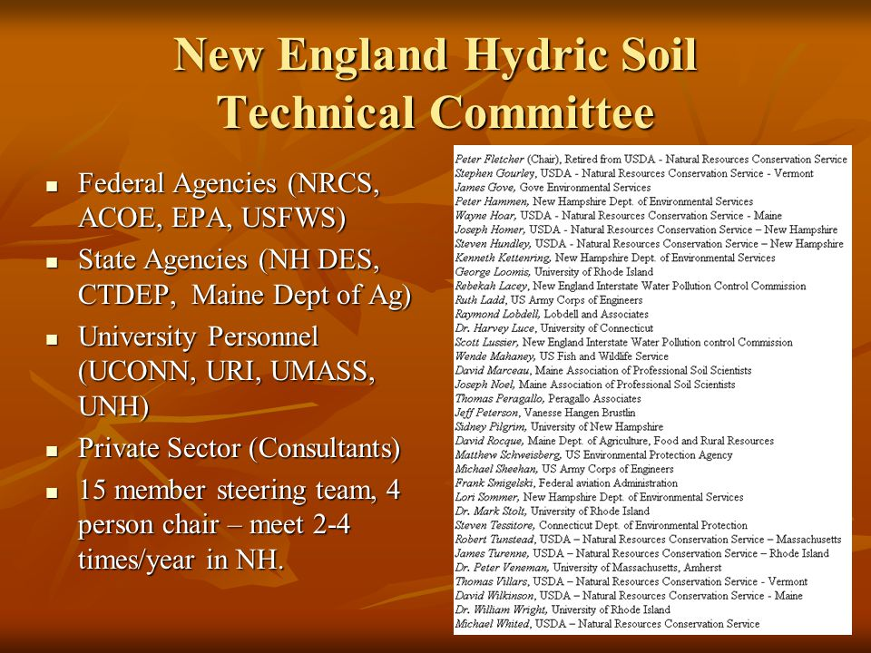 New England Hydric Soil Technical Committee Federal Agencies (NRCS, ACOE, EPA, USFWS) Federal Agencies (NRCS, ACOE, EPA, USFWS) State Agencies (NH DES, CTDEP, Maine Dept of Ag) State Agencies (NH DES, CTDEP, Maine Dept of Ag) University Personnel (UCONN, URI, UMASS, UNH) University Personnel (UCONN, URI, UMASS, UNH) Private Sector (Consultants) Private Sector (Consultants) 15 member steering team, 4 person chair – meet 2-4 times/year in NH.