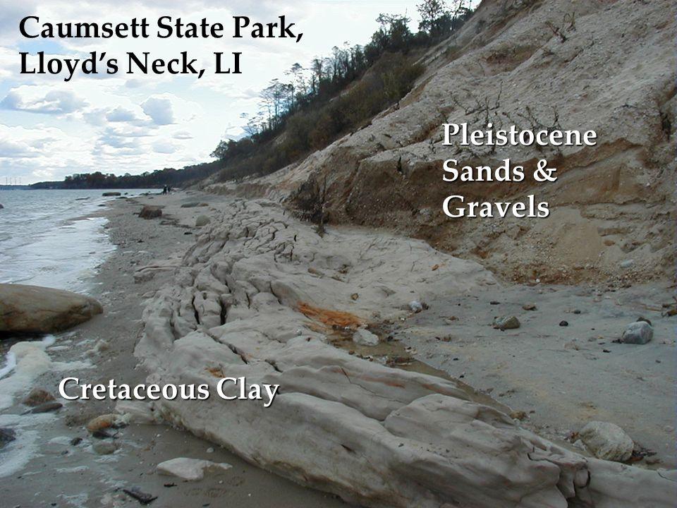 Caumsett State Park, Lloyd's Neck, LI Cretaceous Clay Pleistocene Sands & Gravels