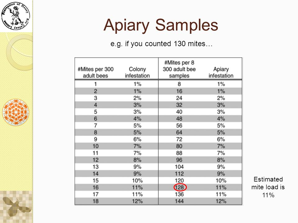 Apiary Samples e.g. if you counted 130 mites… Estimated mite load is 11%