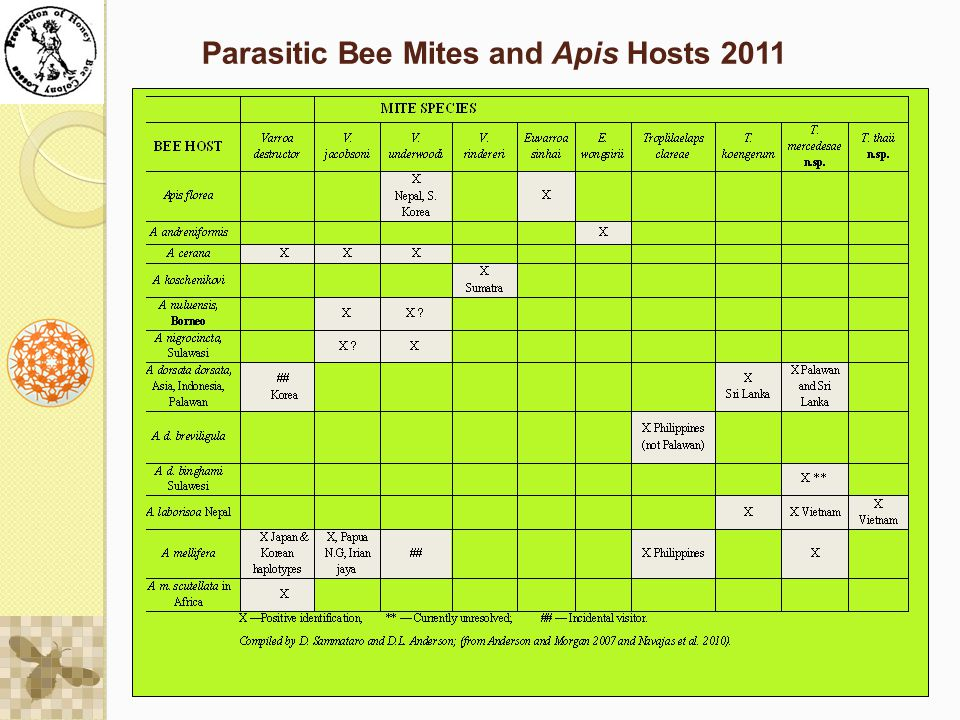 Parasitic Bee Mites and Apis Hosts 2011