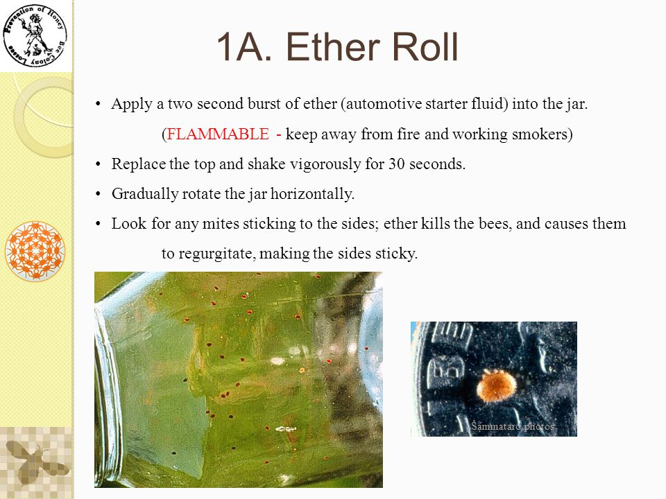 1A. Ether Roll Apply a two second burst of ether (automotive starter fluid) into the jar.