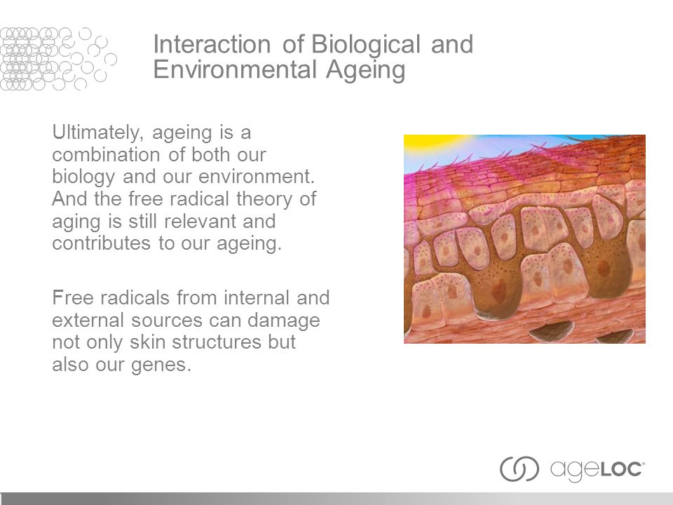 Ultimately, ageing is a combination of both our biology and our environment. And the free radical theory of aging is still relevant and contributes to