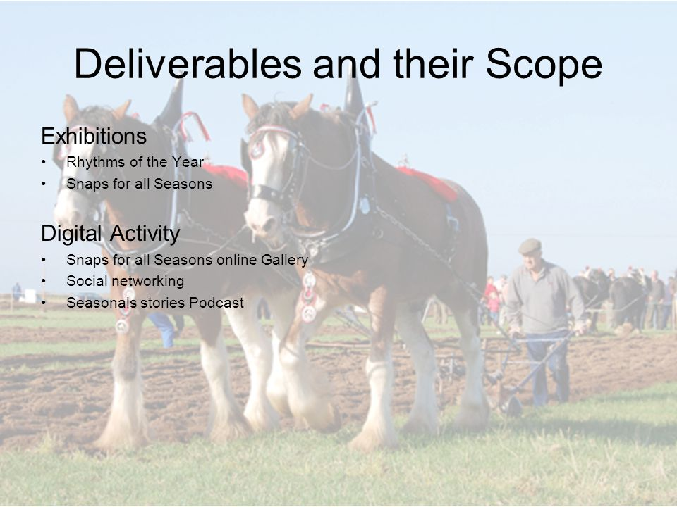 Deliverables and their Scope Exhibitions Rhythms of the Year Snaps for all Seasons Digital Activity Snaps for all Seasons online Gallery Social networking Seasonals stories Podcast