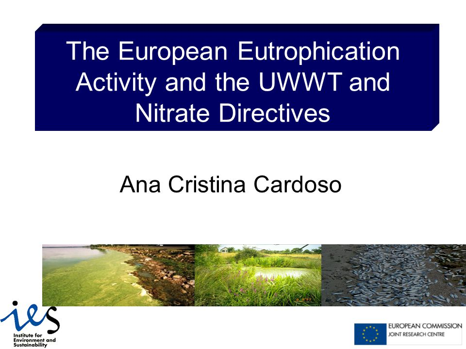 The European Eutrophication Activity and the UWWT and Nitrate Directives Ana Cristina Cardoso