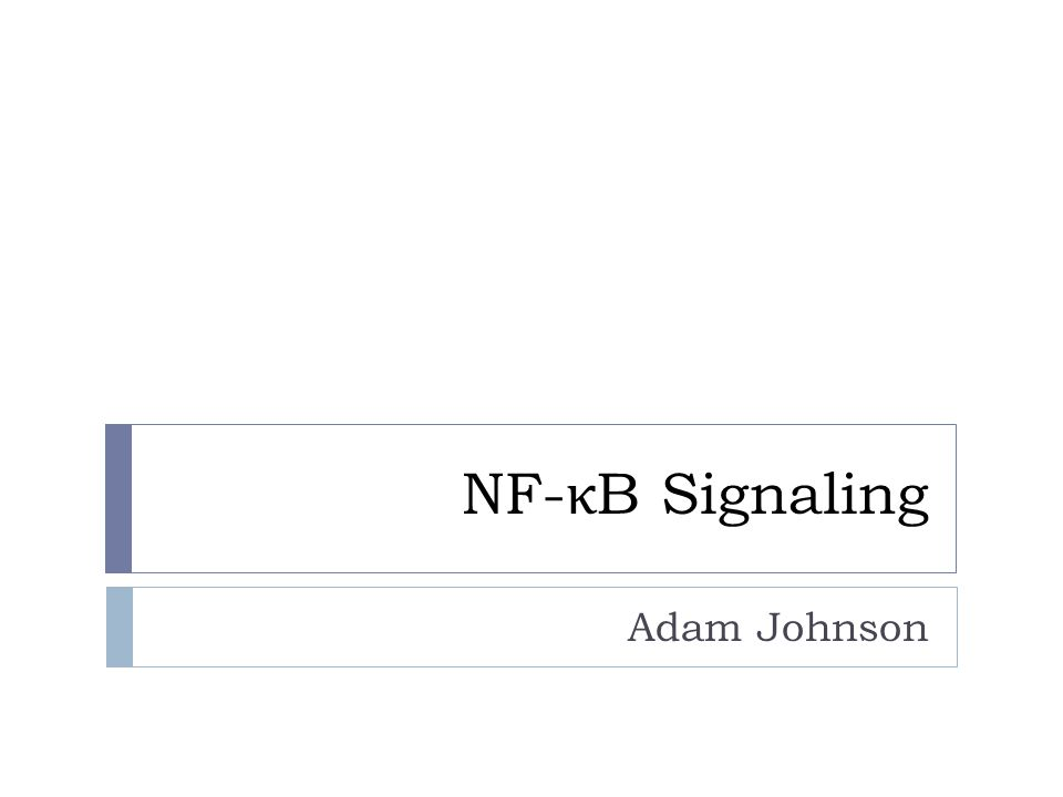 NF- κ B Signaling Adam Johnson