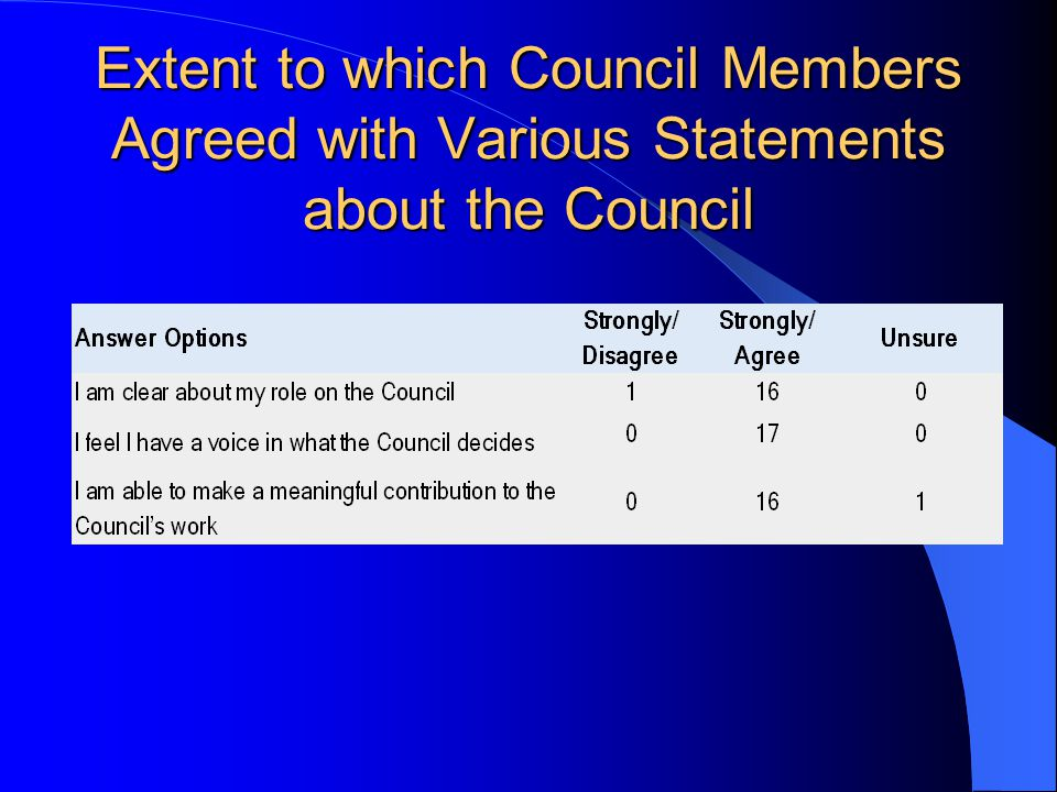 What steps do you think we could take next year to improve the effectiveness of the Council.
