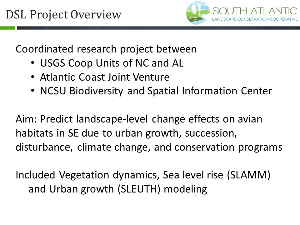 DSL Project Overview Coordinated research project between USGS Coop Units of NC and AL Atlantic Coast Joint Venture NCSU Biodiversity and Spatial Info