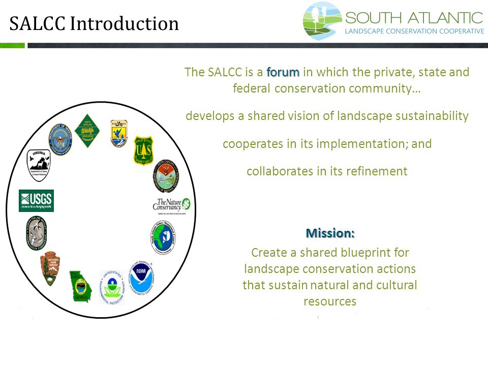 forum The SALCC is a forum in which the private, state and federal conservation community… develops a shared vision of landscape sustainability cooper