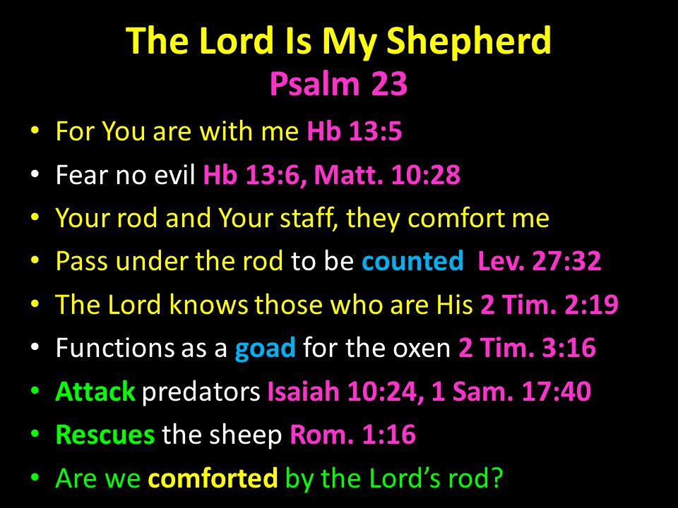 The Lord Is My Shepherd Psalm 23 For You are with me Hb 13:5 Fear no evil Hb 13:6, Matt.