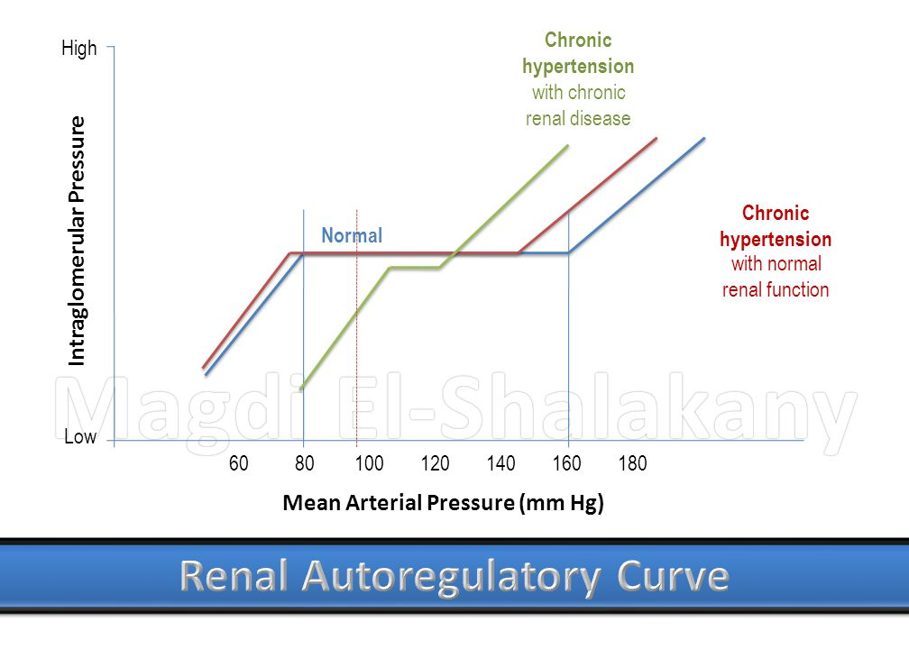 Magdi El-ShalakanyMagdi El-Shalakany Mean Arterial Pressure (mm Hg) Intraglomerular Pressure Chronic hypertension with chronic renal disease Chronic h