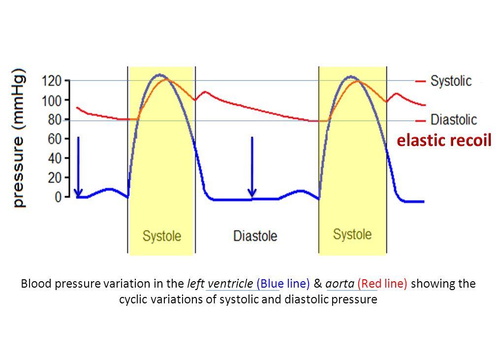The Use of Diuretics Require Electrolyte & Acid-base Balance Monitoring