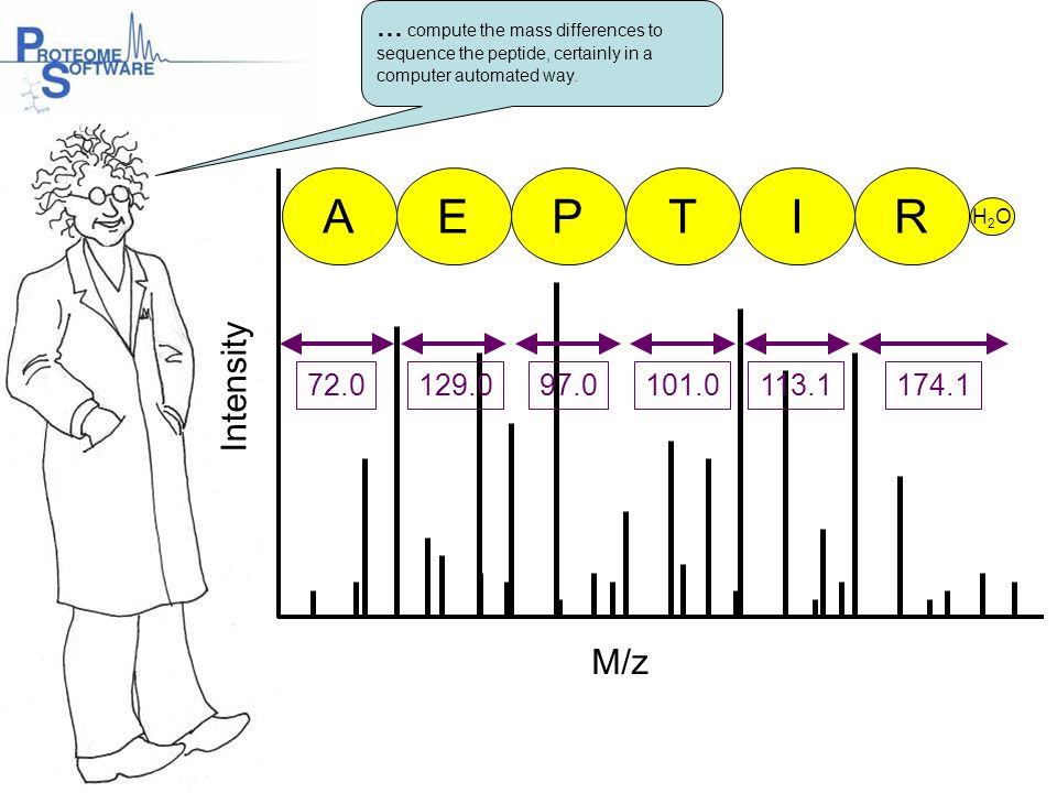 M/z Intensity 72.0129.097.0101.0113.1174.1 AEPTIR H2OH2O … compute the mass differences to sequence the peptide, certainly in a computer automated way