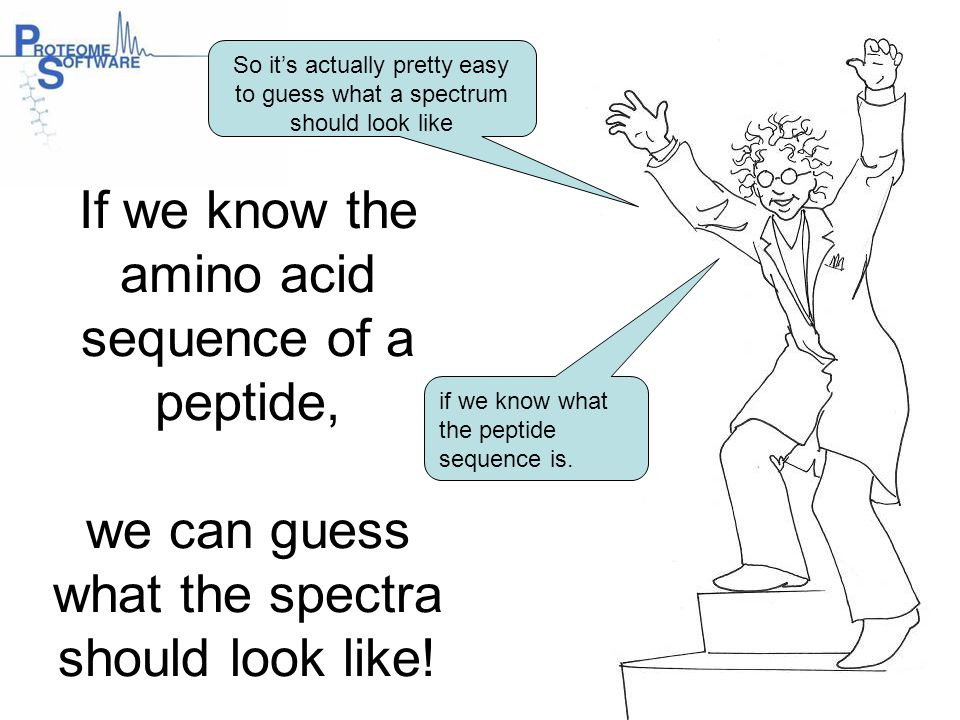 If we know the amino acid sequence of a peptide, we can guess what the spectra should look like! So it's actually pretty easy to guess what a spectrum