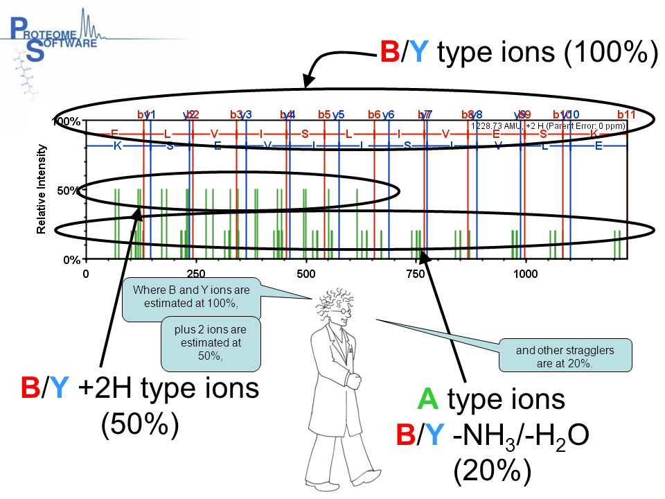 B/Y type ions (100%) A type ions B/Y -NH 3 /-H 2 O (20%) B/Y +2H type ions (50%) Where B and Y ions are estimated at 100%, plus 2 ions are estimated a