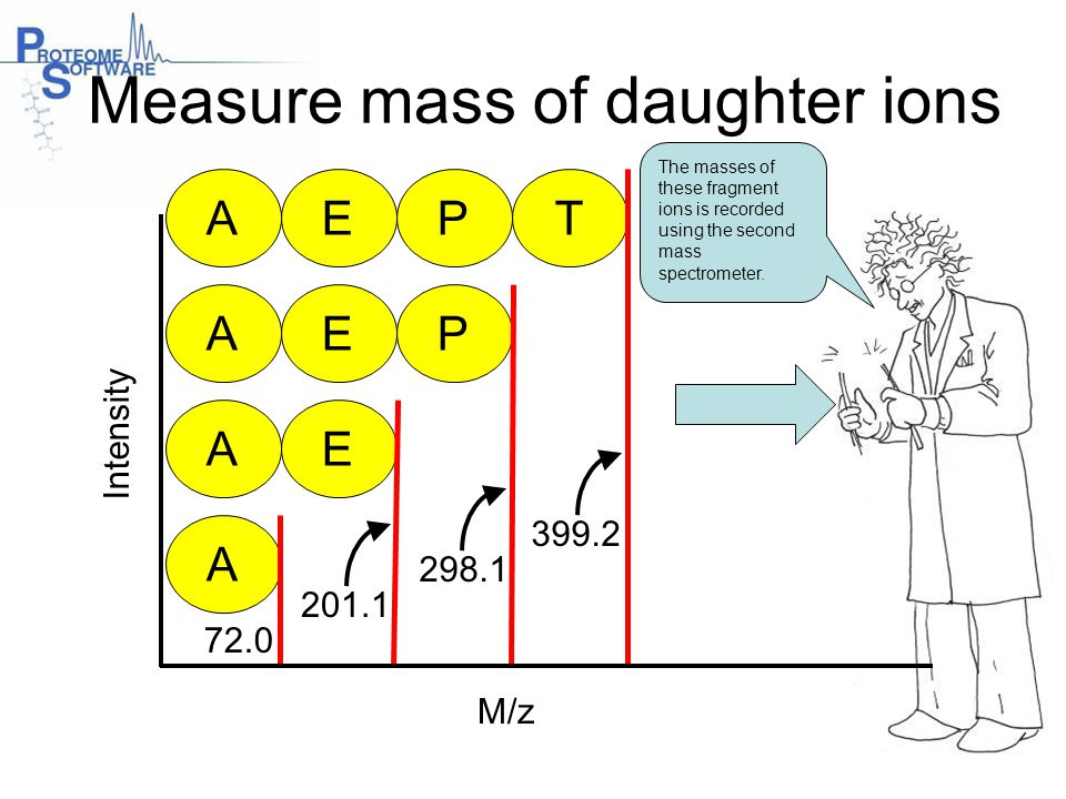 M/z Intensity AEP A AE AEPT 72.0 201.1 298.1 399.2 Measure mass of daughter ions The masses of these fragment ions is recorded using the second mass s