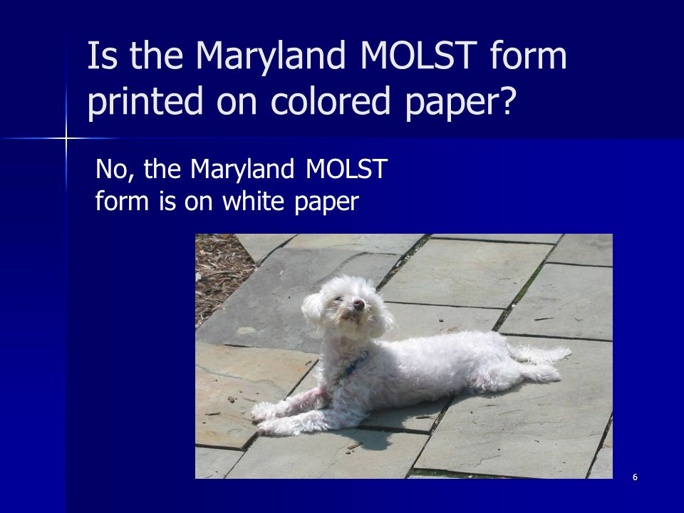 Is the Maryland MOLST form printed on colored paper.