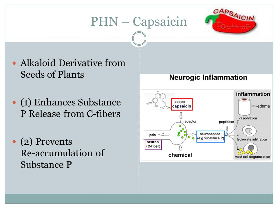 PHN – Capsaicin Alkaloid Derivative from Seeds of Plants (1) Enhances Substance P Release from C-fibers (2) Prevents Re-accumulation of Substance P
