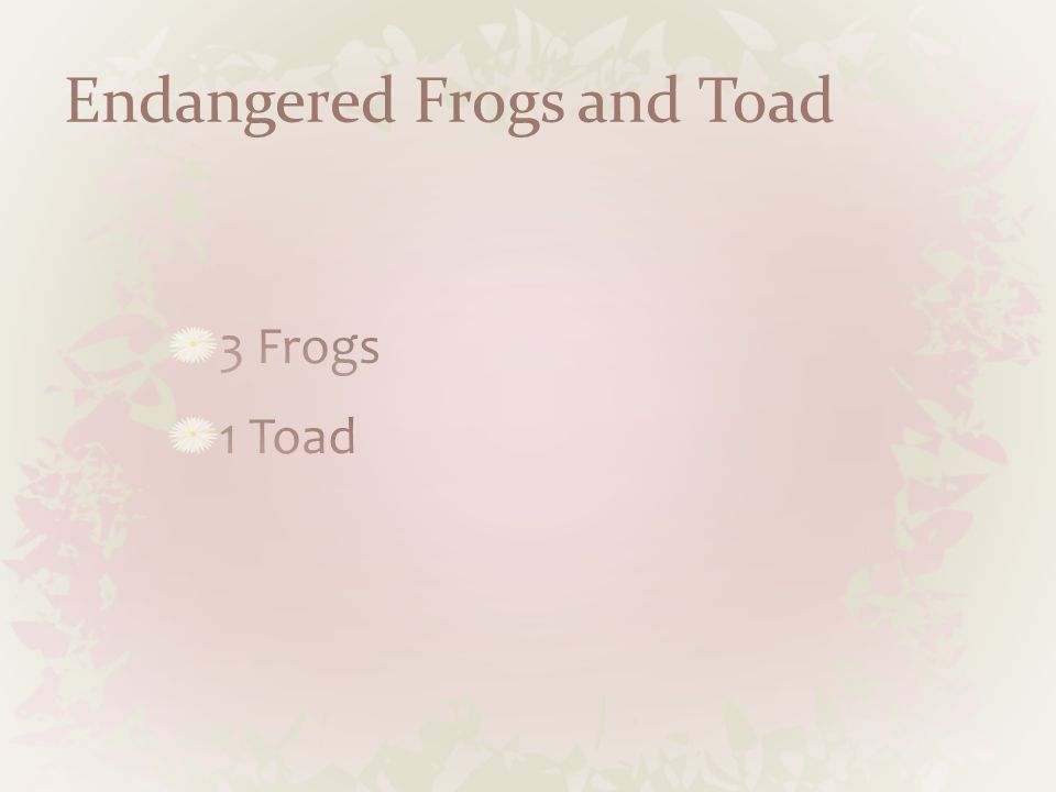 Endangered Frogs and Toad