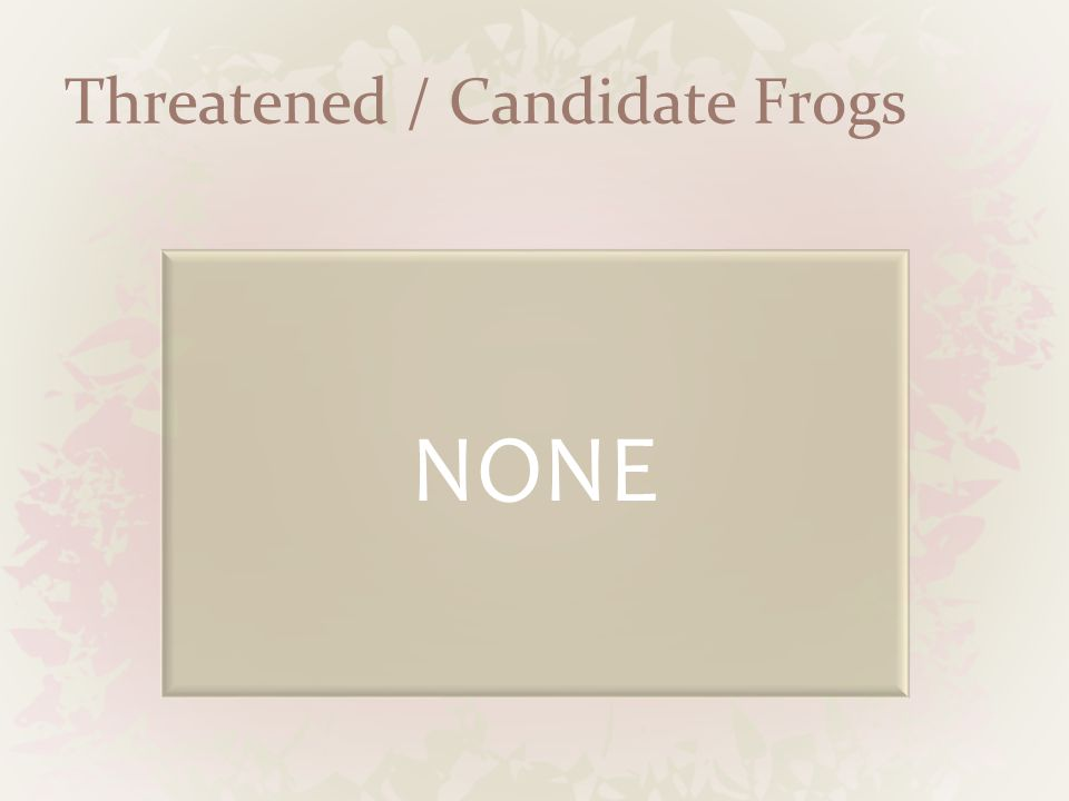 Threatened / Candidate Frogs NONE