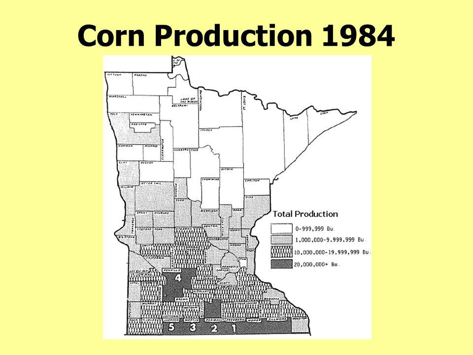 Corn Production 1984