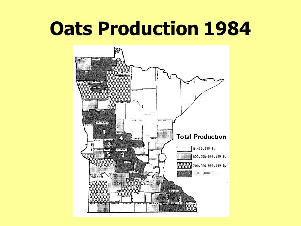 Oats Production 1984