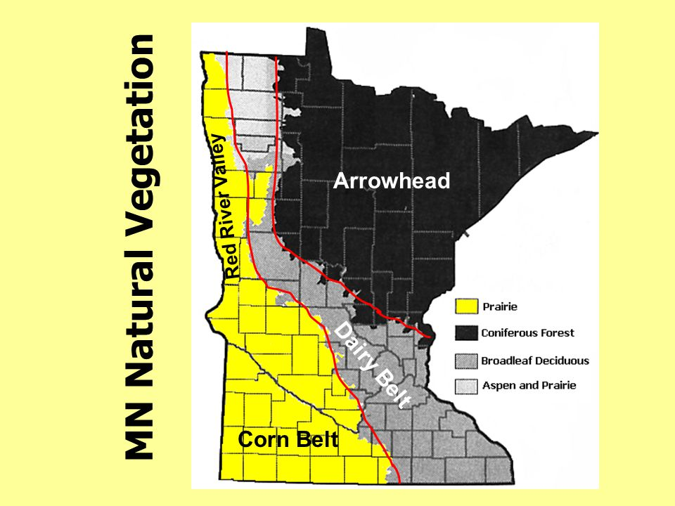 MN Natural Vegetation Arrowhead Dairy Belt Corn Belt Red River Valley