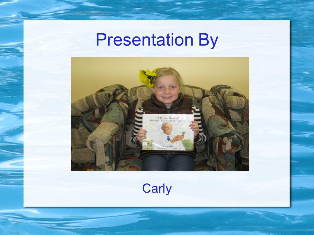 Presentation By Carly