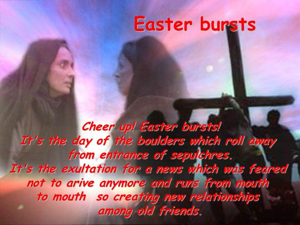 Easter bursts Cheer up. Easter bursts.