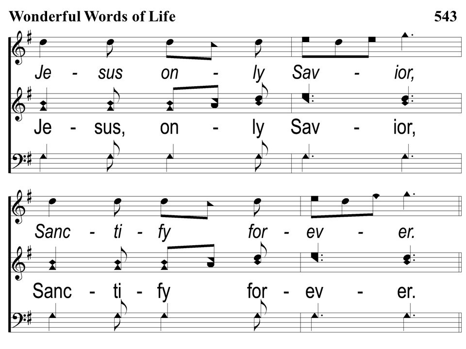 Opt descant 3-3 Wonderful Words of Life Wonderful Words of Life543