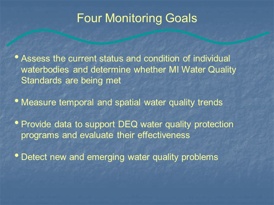 Four Monitoring Goals Assess the current status and condition of individual waterbodies and determine whether MI Water Quality Standards are being met Measure temporal and spatial water quality trends Provide data to support DEQ water quality protection programs and evaluate their effectiveness Detect new and emerging water quality problems