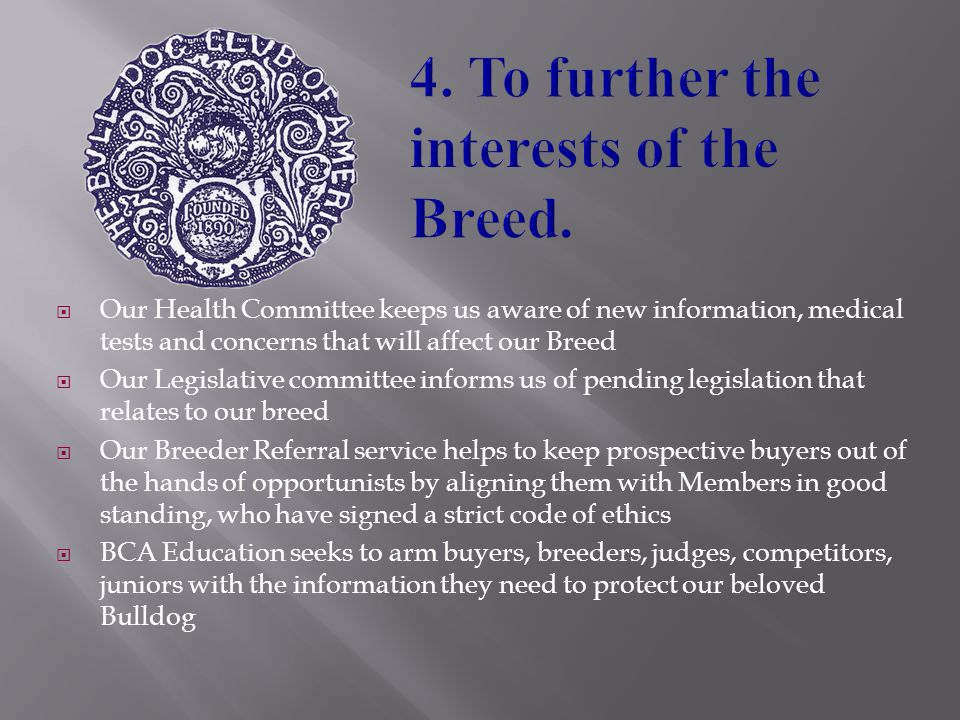  Our Health Committee keeps us aware of new information, medical tests and concerns that will affect our Breed  Our Legislative committee informs us