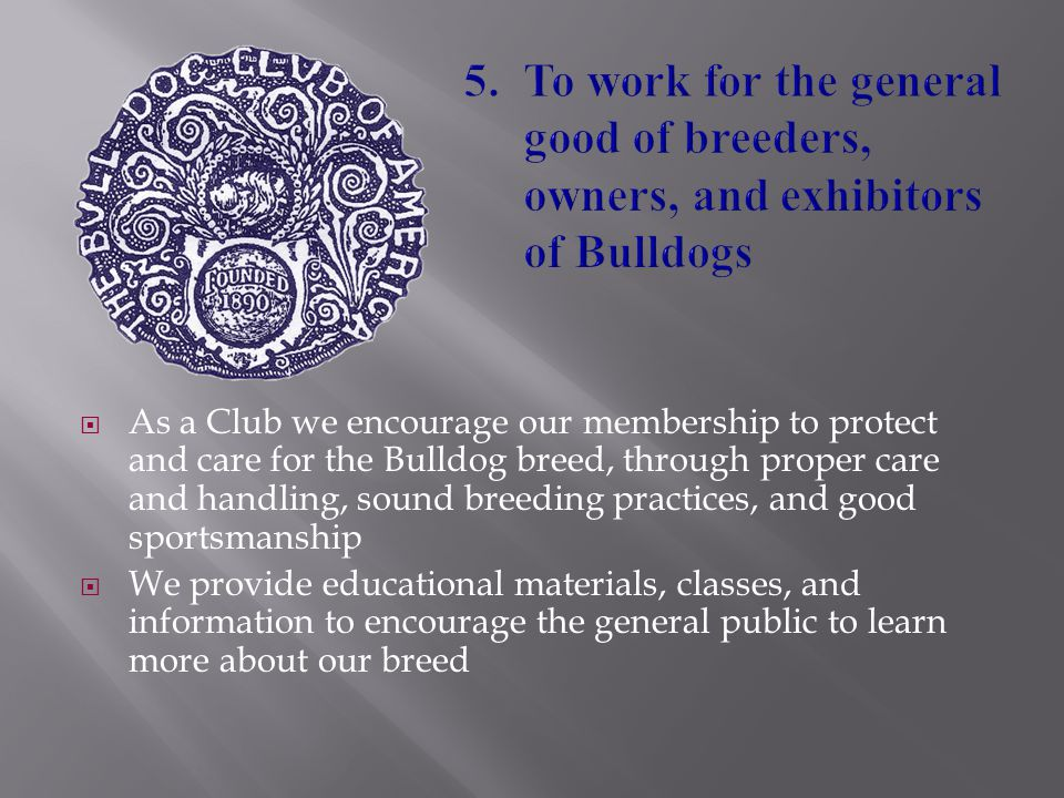  As a Club we encourage our membership to protect and care for the Bulldog breed, through proper care and handling, sound breeding practices, and goo