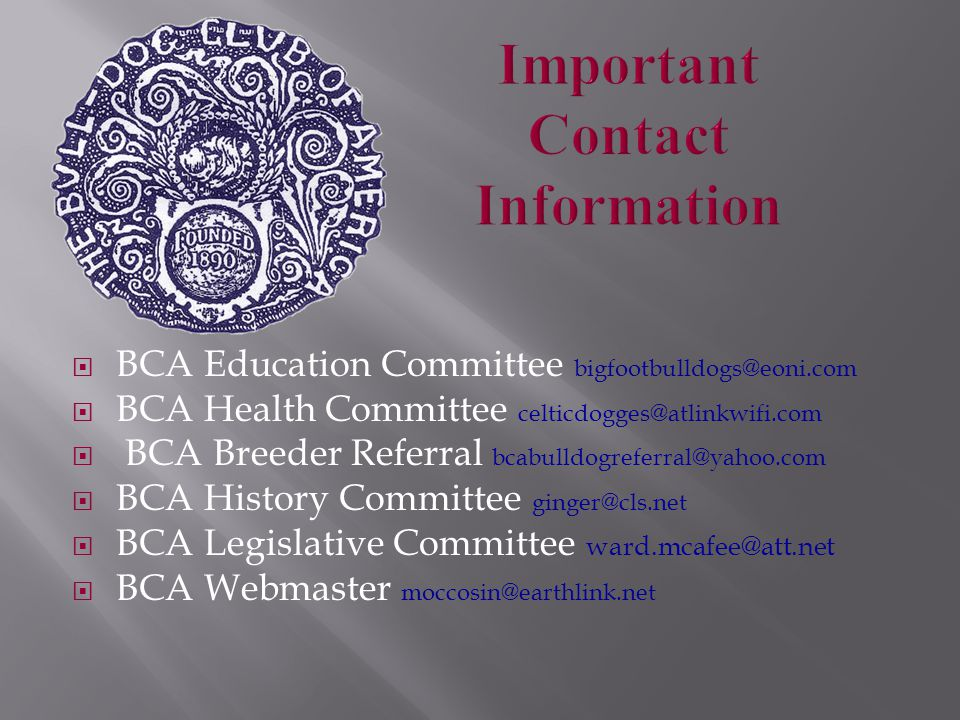  BCA Education Committee bigfootbulldogs@eoni.com  BCA Health Committee celticdogges@atlinkwifi.com  BCA Breeder Referral bcabulldogreferral@yahoo.