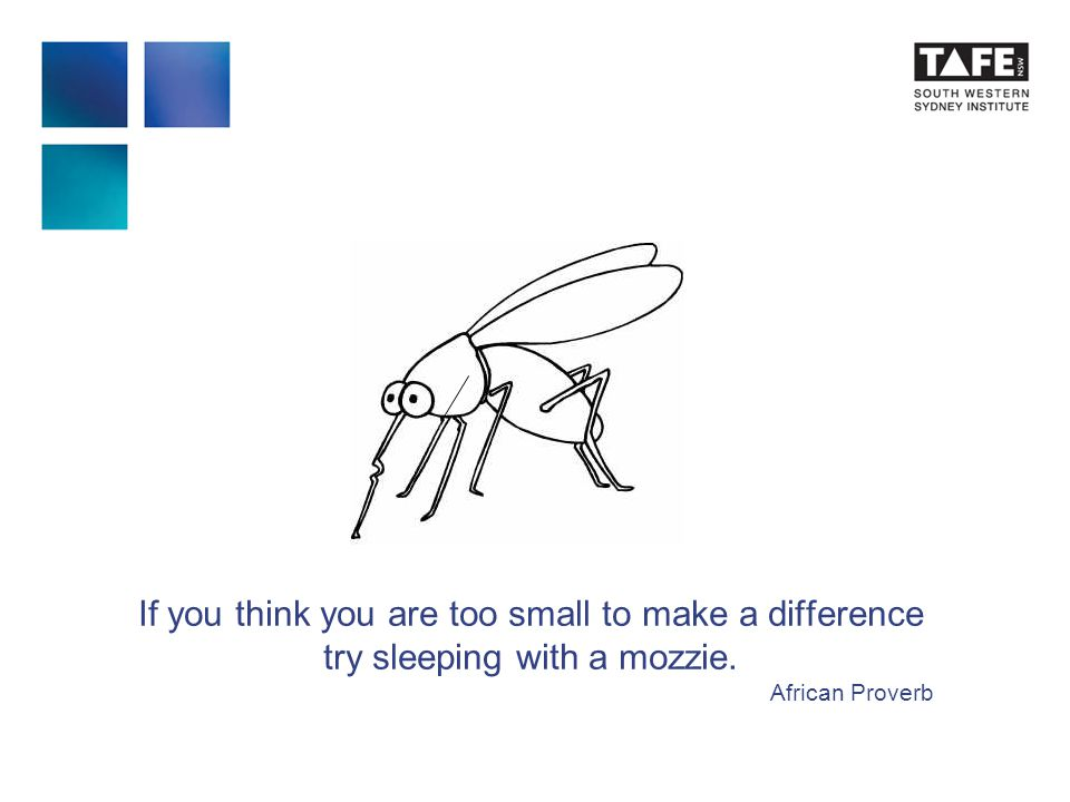 If you think you are too small to make a difference try sleeping with a mozzie. African Proverb